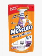 LIMPIA VIDRIOS MR MUSCULO...
